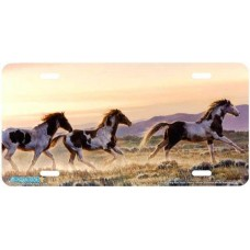 """Early Morning Run"" Horse Airbrushed License Plate"