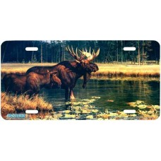 """""""Water World"""" Moose Airbrushed License Plates"""