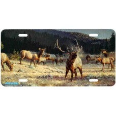 """""""Rocky Mountain Meadow"""" Elk Airbrushed License Plate"""