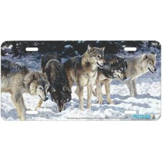 """The Usual Suspects"" Wolf Airbrushed License Plate"