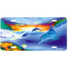 Dolphin Symphony- Against Rainbow Airbrushed License Plate