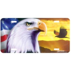 American Pride-Patriotic Airbrushed License Plate
