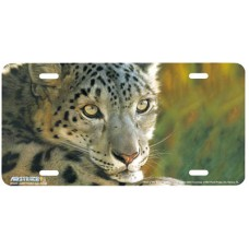 West of the Moon- Cheetah License Plate Airbrushed License Plate
