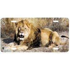 Kalahari Airbrushed License Plate