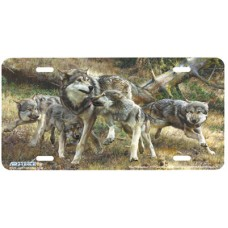 Disorderly Conduct- Wolf Pack Airbrushed License Plate