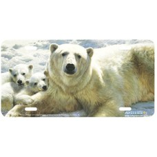 Mother of Pearls-Polar Bears on Ice Airbrushed License Plate