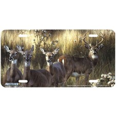 Power and Grace- Deer in Grass Airbrushed License Plate