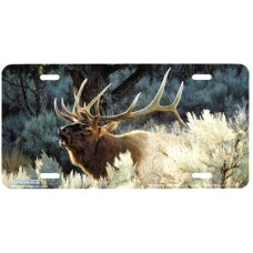 Indian Summer Airbrushed License Plate