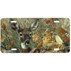 Autumn Lady Airbrushed License Plate