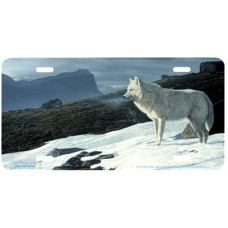 Arctic Wolf Portrait Airbrushed License Plate