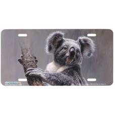 Koala- Bear Airbrushed License Plate