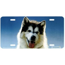 Husky Pup Airbrushed License Plate