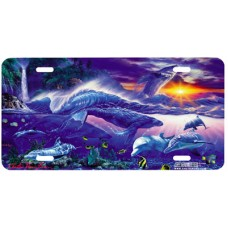 Ancient Rhythms- Dolphins Fish & Ocean Life Airbrushed License Plate