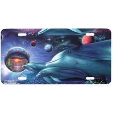 Cosmic Voyagers- Dolphins in Space Airbrushed License Plate