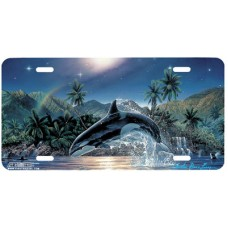 Rainbow Sea- Killer Whale Shamu Airbrushed License Plate