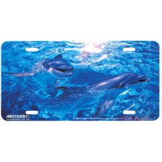 Togetherness- Dolphins Swimming Airbrushed License Plate