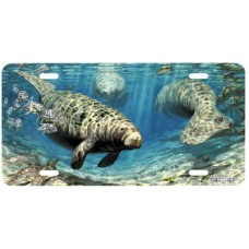 Warm Springs Refuge Manatee Airbrushed License Plate