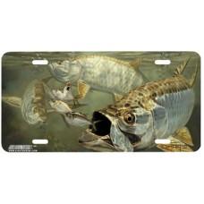 Tarpon and Menhaden Fish Airbrushed License Plate