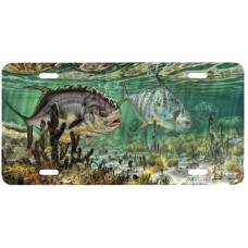 Prowling Permit Fish Airbrushed License Plate
