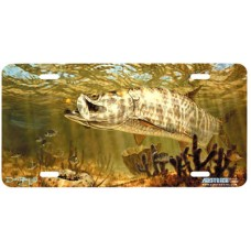 Golden Fly Tarpon Fish Airbrushed License Plate