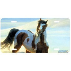 Audacious- Horse Airbrushed License Plate