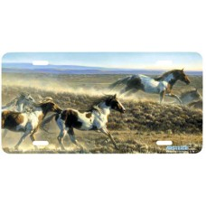 Unbridled Spirit Airbrushed License Plate