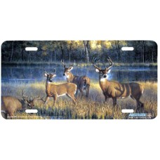 Shadowtime- Deer by the Stream Airbrushed License Plate