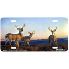 Sundown- Deer at Sunset Airbrushed License Plate
