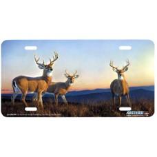 Sundown- Deer at Sunset Airbrushed License Plate