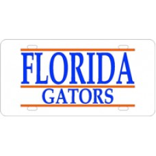 FLORIDA GATORS BAR - BAR