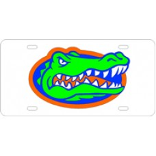 GATOR HEAD - License Plate