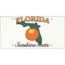 Florida State Replica Plate