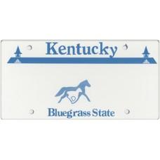 Kentucky State Replica Plate