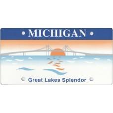 Michigan State Replica Plate