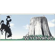 Wyoming State Replica Plate