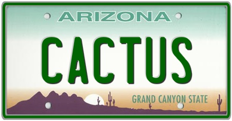 Arizona State License Plate 2