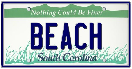 South Carolina State License Plate 2