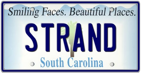 South Carolina State License Plate 3